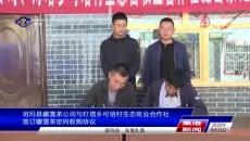 班玛县藏雪茶公司与灯塔乡可培村生态牧业合作社签订藏雪茶定向收购协议