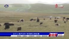 达日上海齐合作 牧民群众得实惠