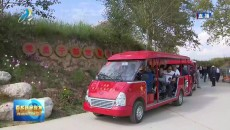"""小高陵:发挥""""红色引擎"""" 引领乡村旅游新发展"""