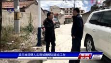 武玉嶂调研大武镇城镇规划建设工作