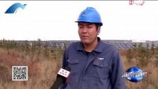 荒漠变绿洲清洁能源让生态与经济齐发展