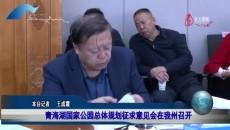 海南新闻联播 20201118