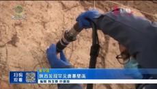 陕西发现罕见唐墓壁画