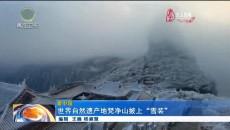 """世界自然遗产地梵净山披上""""雪装"""""""