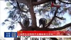 云南野生动物园开启趣味假日活动