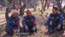 大美青海 20201106