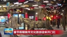春节假期西宁市文化旅游迎来开门红