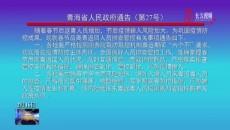 青海省人民政府通告(第27号)