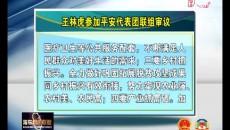 王林虎参加平安代表团联组审议时强调 坚持以新发展理念为引领 让古驿平安在建设城乡统筹新海东新征程中走在前列
