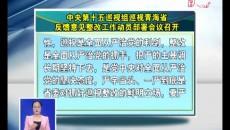 中央第十五巡视组巡视青海省反馈意见整改工作动员部署会议召开 鸟成云王林虎在海东分会场参加会议