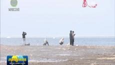 """青海湖:湖开春意浓 游客""""打卡""""忙"""