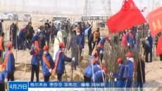 格尔木市各族各界干部群众参加义务植树活动