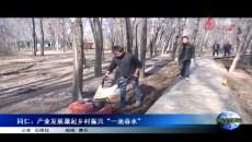"""同仁:产业发展激起乡村振兴""""一池春水"""""""