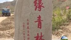 """天津援青前指开展 """"添彩绿水青山·献礼建党百年""""主题党日义务植树活动"""