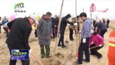 携手添新绿 造林开新局 格尔木市各族各界干部群众参加义务植树活动