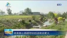 西宁市沈那遗址公园项目建设正加快推进