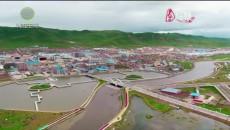 今日青海 20210617