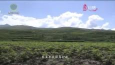 今日青海  20210723