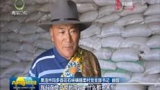 措柔村:党员干部显担当 乡村振兴有力量