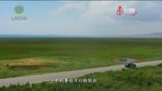 今日青海 20210803