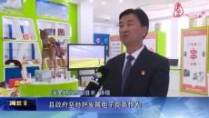 海晏:发展电子商务 助力乡村振兴