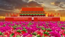 感恩党 颂祖国 我的梦-中国梦