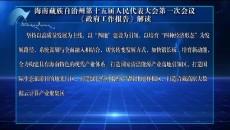 海南藏族自治州第十五届人民代表大会第一次会议《政府工作报告》解读