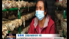 厚植特色产业底色 激发乡村振兴活力