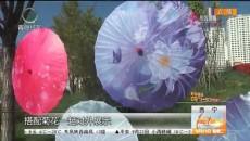 金秋菊展庆佳节