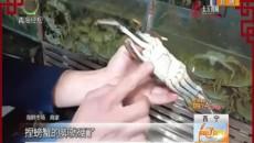 螃蟹挑选有方法