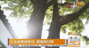 十五省媒体联动 漫游网红院