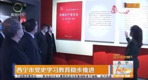 西宁市党史学习教育稳步推进
