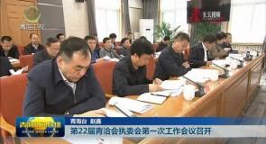 第22届青洽会执委会第一次工作会议召开