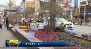 八万株鲜花扮靓大通县城
