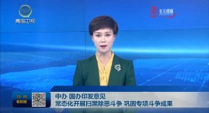 中办 国办印发意见 常态化开展扫黑除恶斗争 巩固专项斗争成果