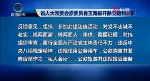 省人大常委会原委员肖玉海被开除党籍和公职