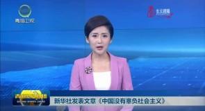 新华社发表文章《中国没有辜负社会主义》