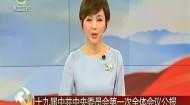 十九届中共中央委员会第一次全体会议公报