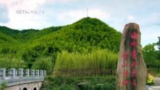绿水青山(3)