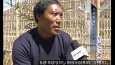 《百姓十分钟》231期汉语玉树州:优先道路景观 打造百里绿色长廊VA0