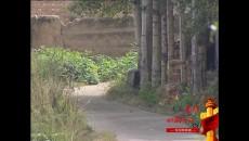 024第一书记——赵雅萍——湟中县
