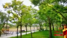 079 西寧人有福!不用出市區就有這么美的地方可以浪!