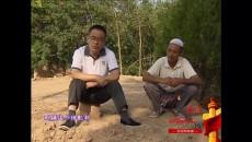 025援青第一书记-施晶智-民和县