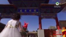 050 梨花節宣傳片