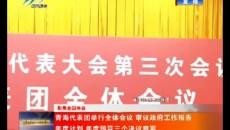 青海代表團舉行全體會議 審議政府工作報告 年度計劃 年度預算三個決議草案