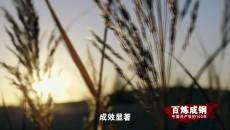《百炼成钢:中国共产党的100年》 第四十三集 联产承包责任制