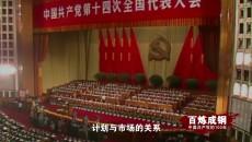 《百炼成钢:中国共产党的100年》 第五十五集 上下求索