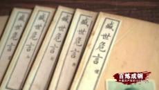 《百炼成钢:中国共产党的100年》 第六十九集 上海世博会