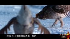 """我们的国家公园  葛玉修和他的""""鸟"""""""