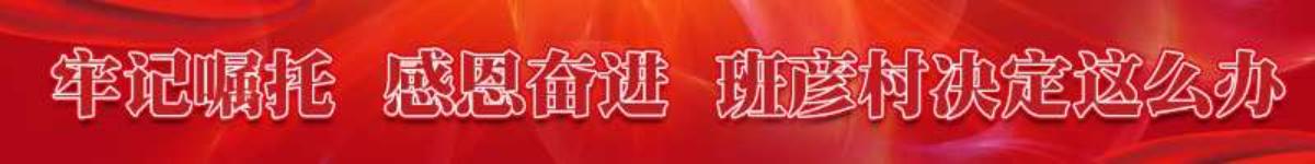 總書記視察后,面對省委書記的提問,班彥村決定這么辦!